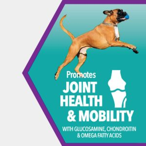 Joint Health and Mobility